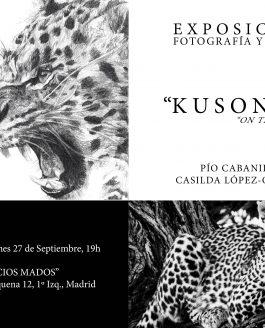 Kusonga en Vanitatis